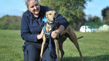 Francine Cotton from the Blue Cross with Charlie the Lurcher who is in desperate need of a loving ne