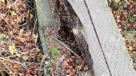 Concerns have been raised about the safety of the path Picture: LUCILLE WHITING