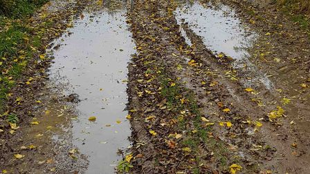 """The footpath has been described as """"unsafe and unsuitable"""" Picture: LUCILLE WHITING"""