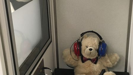 Teddies test each other's hearing Picture: THE HEARING CARE CENTRE