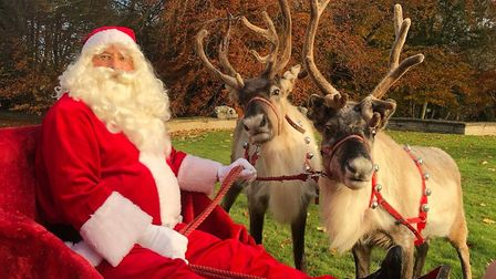 Apparently Rudolph had the day off Picture: ALEX BALL