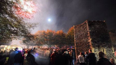 Bury St Edmunds fireworks in Abbey Gardens Picture: GREGG BROWN