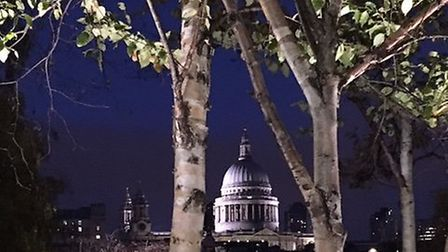 I could have shown you a picture of my swollen ankle but thought this one of St Paul's Cathedral fro