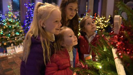 Elsie and Olivia Moores, Lexie and Taylor Owen enjoying the twinkling trees Picture: SARAH LUCY BRO