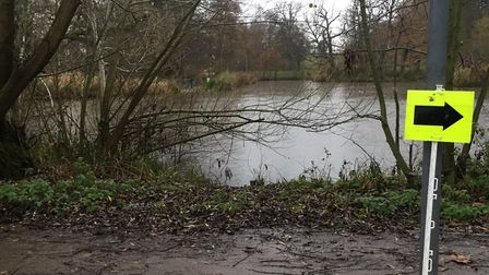The lake in Barclay Park, which runners circumnavigated four times during last Saturday's parkrun. P