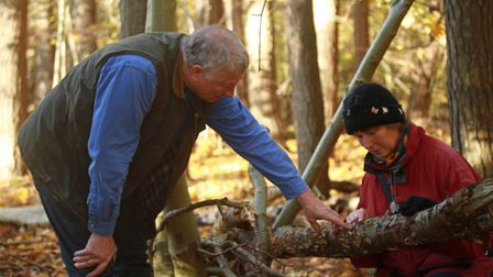 Suffolk county fungus recorder Neil Mahler (right) studying fungi with colleague