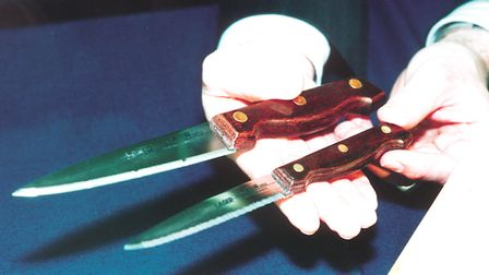 Two knives similar to those used in the murder of Karen Hales