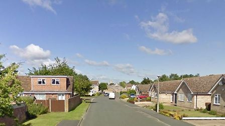 Police managed to contained the string of horses in Lark Road Picture: GOOGLE MAPS