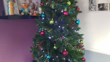 Christmas enthusiasts are putting up their trees now Picture: CHLOE BLAKE