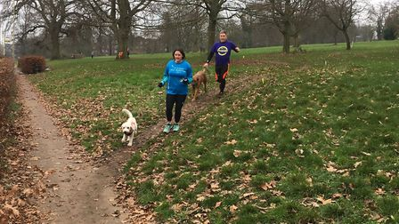 Dogs were a common sight at last Saturday's Gadebridge parkrun, leading their owners around a 5K cou