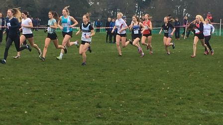 The start of the senior girls' race at the Suffolk Schools Series B Cross Country Championships