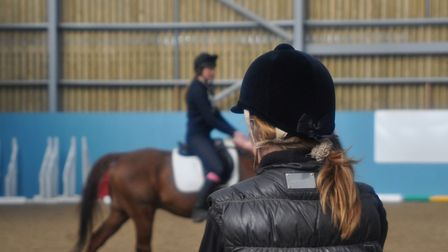 Easton & Otley College offers an extensive range of courses and training, including equestrian studi