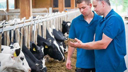 Practical education is key to vocational training Picture: Countrypixel - stock.adobe.com