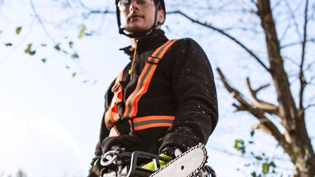 A college can offer new skills to learn � arboriculture, for example Picture: Halfpoint - stock.ad
