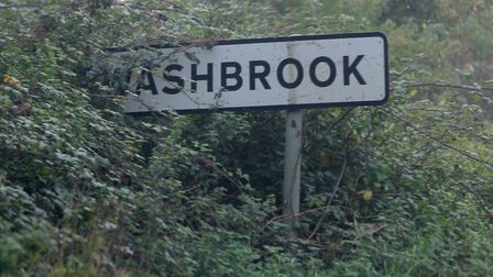 Shrubbery blocking road signs could be among the kind of work parish and town council volunteers car