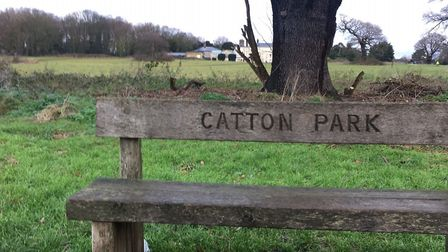 Catton Park, the home of Catton parkrun, situated just north of Norwich. Picture: CARL MARSTON