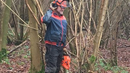 Coppicing is a traditional method of woodland management