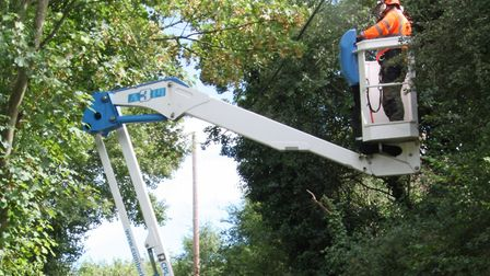 It's easy when you've got a road closure! Tree surgeons from bts Group Ltd, working on behalf of UK