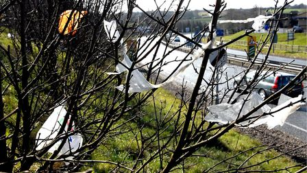 Plastic bags litter the main road into Ipswich at the Copdock interchange Picture Owen Hines