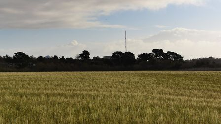 Sizewell C will encroach on land belonging to John Poll Picture: SARAH LUCY BROWN