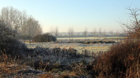 It's a cold and frosty start in Suffolk and Essex this morning Picture: MICK WEBB/ CITIZENSIDE