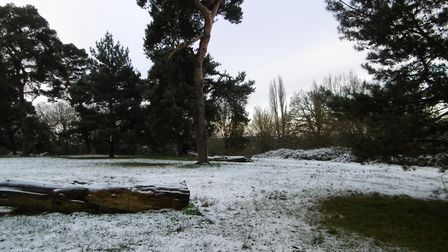 Snow today in Ipswich Picture: DAVID VINCENT