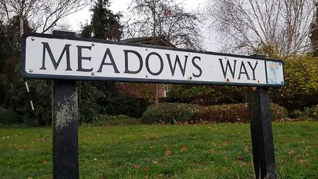 Meadows Way, Hadleigh, where Bowza lay with the injured woman Picture: RACHEL EDGE