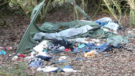 Fly-tipping in woods near Foxhall Stadium in Ipswich