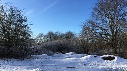 Suffolk is not predicted to have blankets of snow this weekend. Picture: CHARLOTTE SMITH-JARVIS