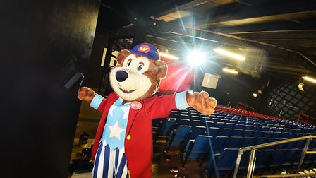 Woody, the mascot at Pleasurewood Hills. Picture: ANTONY KELLY