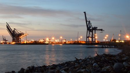 The Port of Felixstowe has been designated a CITES port in the event of a no-deal Brexit Picture: