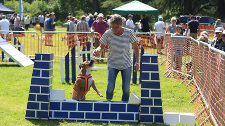 Action from Paws in the Park at Nowton Park in Bury St Edmunds in 2018 Picture: LUCY KAYNE