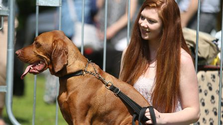 Last year's Paws in the Park at Nowton Park in Bury St Edmunds Picture: LUCY KAYNE