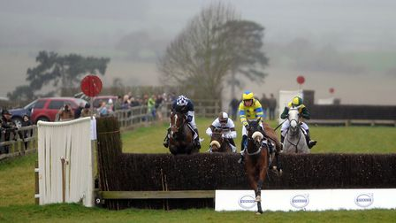 Point to Point horseracing at Horseheath this weekend