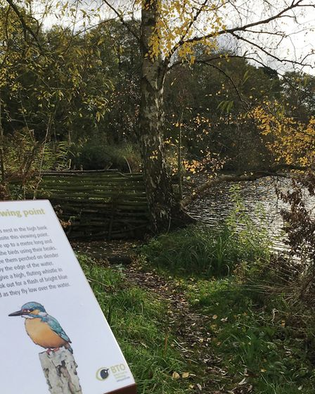 The Kingfisher viewing point at Nunnery Lakes reserve in Thetford.