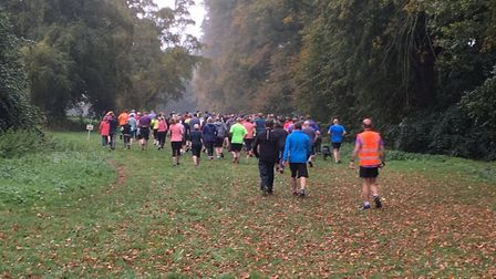 Runners disappear into the distance down the promenade of trees in Nowton Park, during the weekly Bu