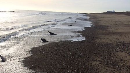 The mysterious objects were spotted at low tide near Minsmere Picture: NORMAN FINCH