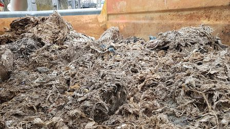 800 tonnes of wet wipes are found in our drains every week. Picture: RACHEL EDGE