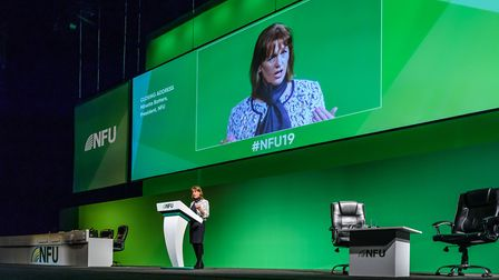 NFU president Minette Batters addresses the 2019 conference Picture: SIMON HADLEY