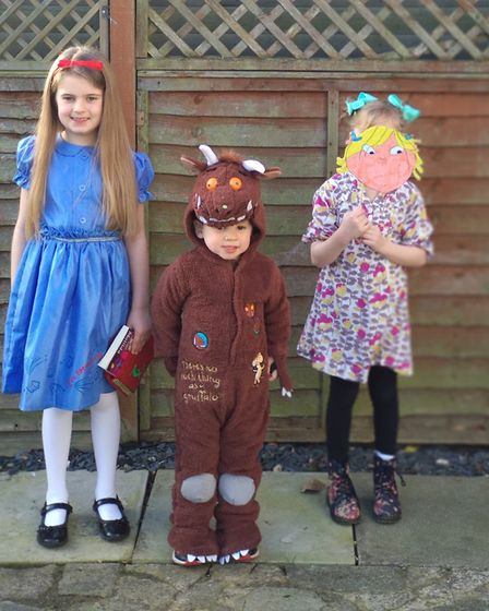 Olivia, Hope and Alfie as Matilda, the Gruffalo and Lola from Charlie and Lola. Picture: KERRY WAKEM