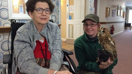 Suffolk Owl Sanctuary paid a visit to Mildenhall Lodge care home Picture: MILDENHALL LODGE