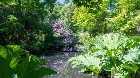 The private gardens are said to be one of the finest in East Anglia Picture: MARK RIVERS