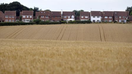 A wheat field looks down upon the village of Brantham. Picture: Su Anderson