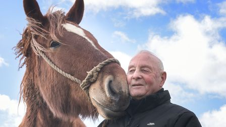 Bruce Smith with Zippo from The Suffolk Punch Trust. He still helps the trust, as a volunteer  joki