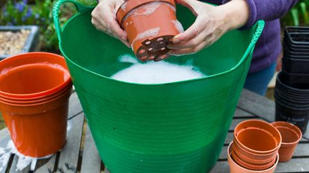 Plant pots being washed for reuse Picture: Thinkstock/PA