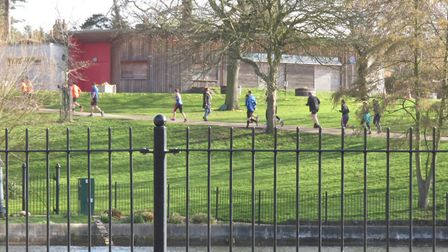 Christchurch Park was a fine setting for Saturday's 340th staging of the Ipswich parkrun. Picture: I