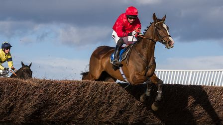 Laser Beam and Richard Collinson, on their way to winning the Restricted race at Ampton on Sunday. P