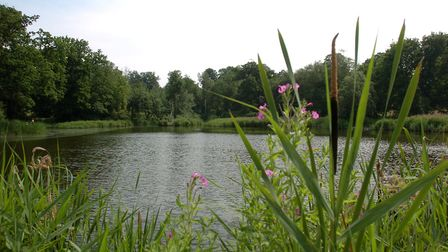 Two anglers caught at The Beechwater Pond in Chantry Park were among 15 people to be fined a total o