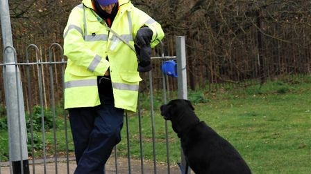 On duty: volunteer Ray and his canine friend wait for runners to appear during the Thurrock parkrun