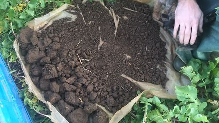 Soil structure assessments Picture: BRIAN BARKER